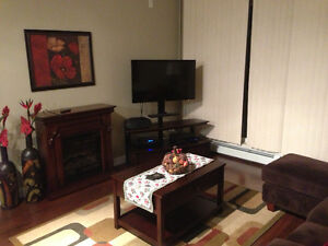 Beautifully Renovated 2 bedroom Condo - Unfurnished or Furnished