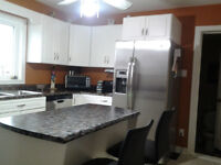 Newly renovated house for Rent in West/South end of Sudbury