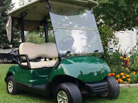 ~ The Golf Cart Guy ~ 2007 YAMAHA ELECTRIC GOLF CART