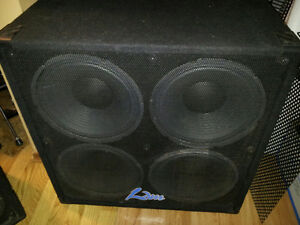 100 watt 4-12 guitar cabinet (Blind River)