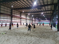 Adult co-ed beach volleyball leagues. Indoors!