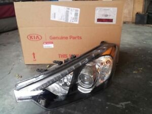 Drivers side seeled headlight assembly