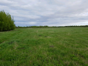 100 acres for rent
