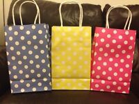 Luxury Paper Gift bags (1 pack/10 bags/1 colour)