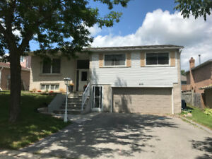 Newmarket 3Br Raised Bungalow available now