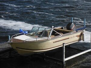 16ft. Bluefin Motorboat with 80HP Mariner Motor
