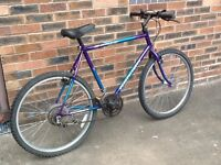 "Raleigh Sabre gents mountain bike 26"" wheels 18 speed Shimano 21"" frame Good working order"