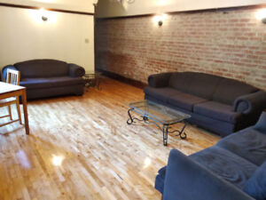 Completely renovated well-lit 10 1/2 1/2 near Beaubien station