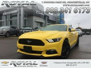 2016 Ford Mustang EcoBoost  - Bluetooth -  SYNC - $205.89 B/W