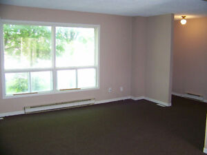 THREE BEDROOM CONDO CLOSE TO FANSHAWE Stratford Kitchener Area image 5