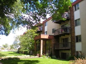 Renvated 2 bedroom in Oliver across from Oliver Square!