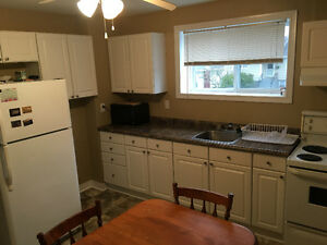2 Bedroom Basement Apartment between Avalon Mall and MUN St. John's Newfoundland image 1