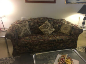 Sofa with pull-out bed and love seat -$150.00 for both or best
