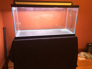 90 Gal Fish Tank with stand and lamp