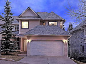 GORGEOUS FULLY-FINISHED WALKOUT HOME IN PATTERSON!