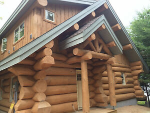 handcrafted log homes  monster logs