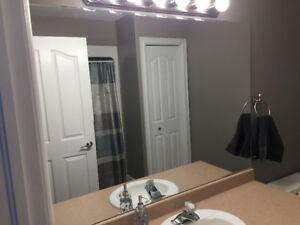 5 foot mirror and Light Fixture