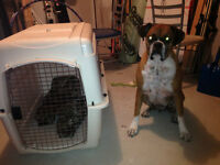Pet kennel - travel approved