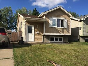 Day Light Basement Suite for rent - Millwoods
