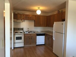 1  & 2 bedroom apartments available immediately