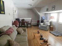 One Bedroom Apartment in Rothesay $750  Heat & Lights Included