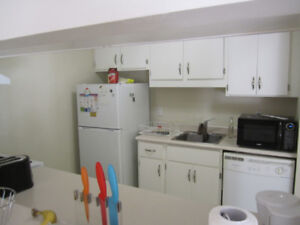 Apartment for rent / roommate wanted - Downtown Halifax