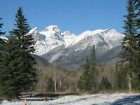 Montane Developments -Fernie land