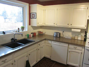 Granite Kitchen Counter and Sink