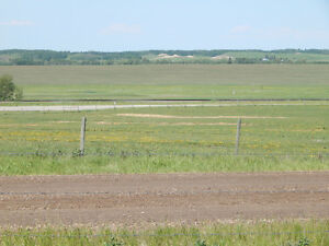 Bare land just north of Innisfail