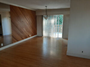 4 Bed Room Large House for Rent (North Delta)