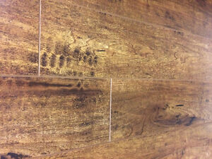 12mm Laminate $1.47sf IN-STOCK!!! 8 Colours @ GREAT FLOORS London Ontario image 4