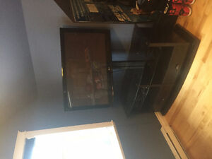 """42"""" LG TV and Entertainment Stand"""