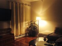 2 bedroom + den downtown available now
