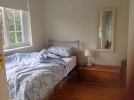 Nice single room in Greenwich!