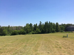 Professional lawn cutting. Small lots to several acres Cambridge Kitchener Area image 8