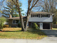 Family Friendly ANCASTER House for Rent....