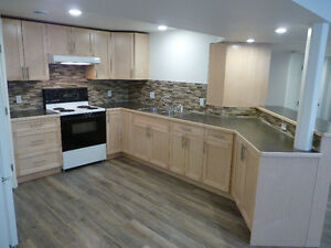 Basement Suite 2 Bedroom, Brand New Newly Renovated