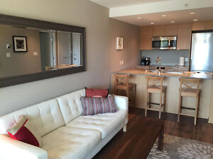 Brand New Furnished 1 Bdrm Apartment- Local on Lonsdale