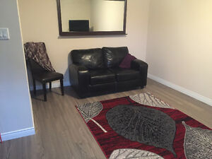 Furnished, Pet Friendly, 2 Bdrm Ground Level Apartment
