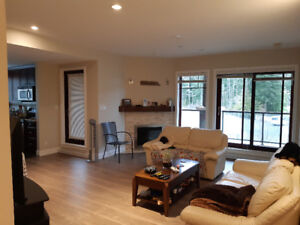 Shared living - roommate wanted