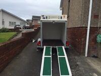 Trident single axle trailer