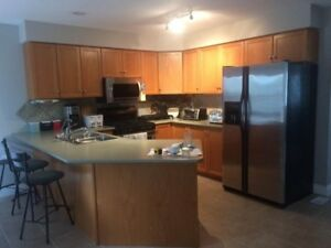 Kitchen cabinets, stove and dishwasher all for