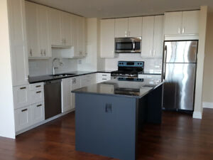 Spacious, Modern 3 Bedroom, Mooney's Bay, Available May 1st