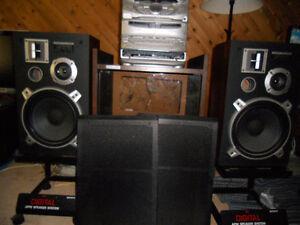 pioneer speaker. cs305.