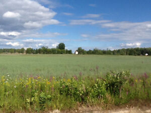 Farm land for Sale - 40 acres