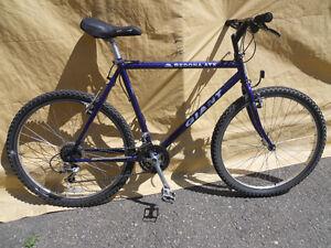 "20"" Giant Sedona ATX Mountain Bike"