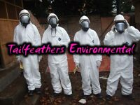 ***we clean asbestos, mould (mold), fire, water, smoke damage***