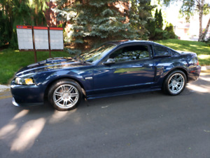 MUSTANG GT 2002 Ready for Summer