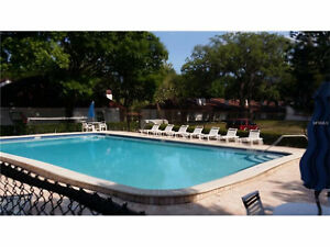 PRICED TO SELL! Nice Condo in Clearwater Florida.
