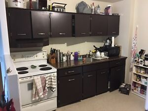 Bright, Spacious, Open Concept Newly Renovated 2 Bedroom